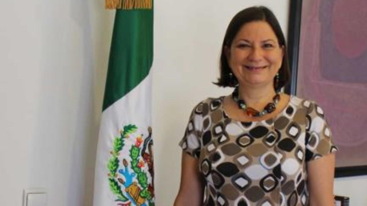 embajadora Bárcena