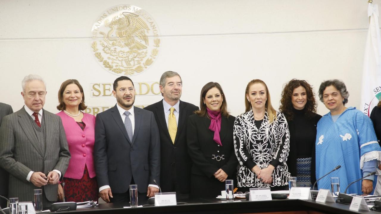 Martha Bárcena en el Senado