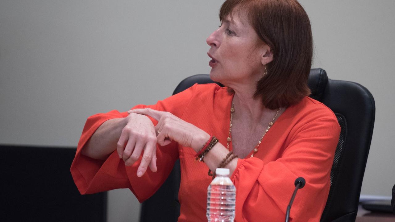 Tatiana Clouthier senadores