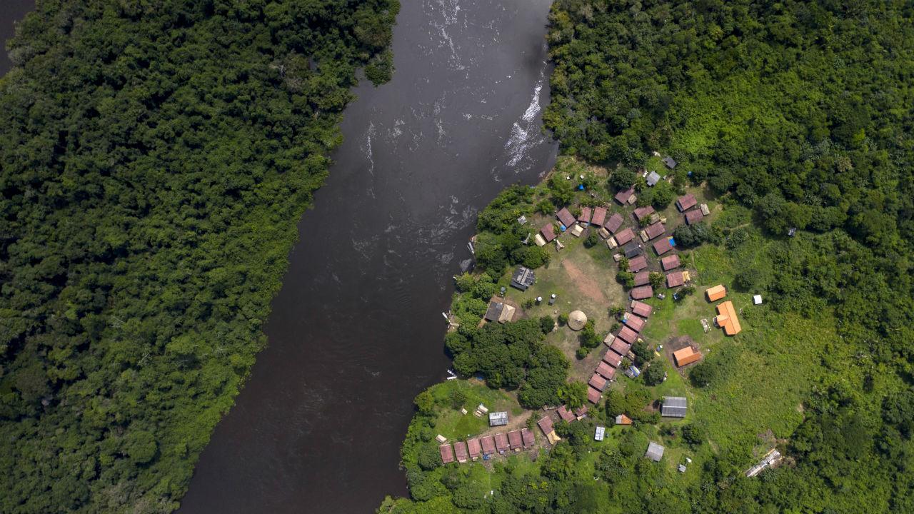 destruyeron hectareas selvas tropicales