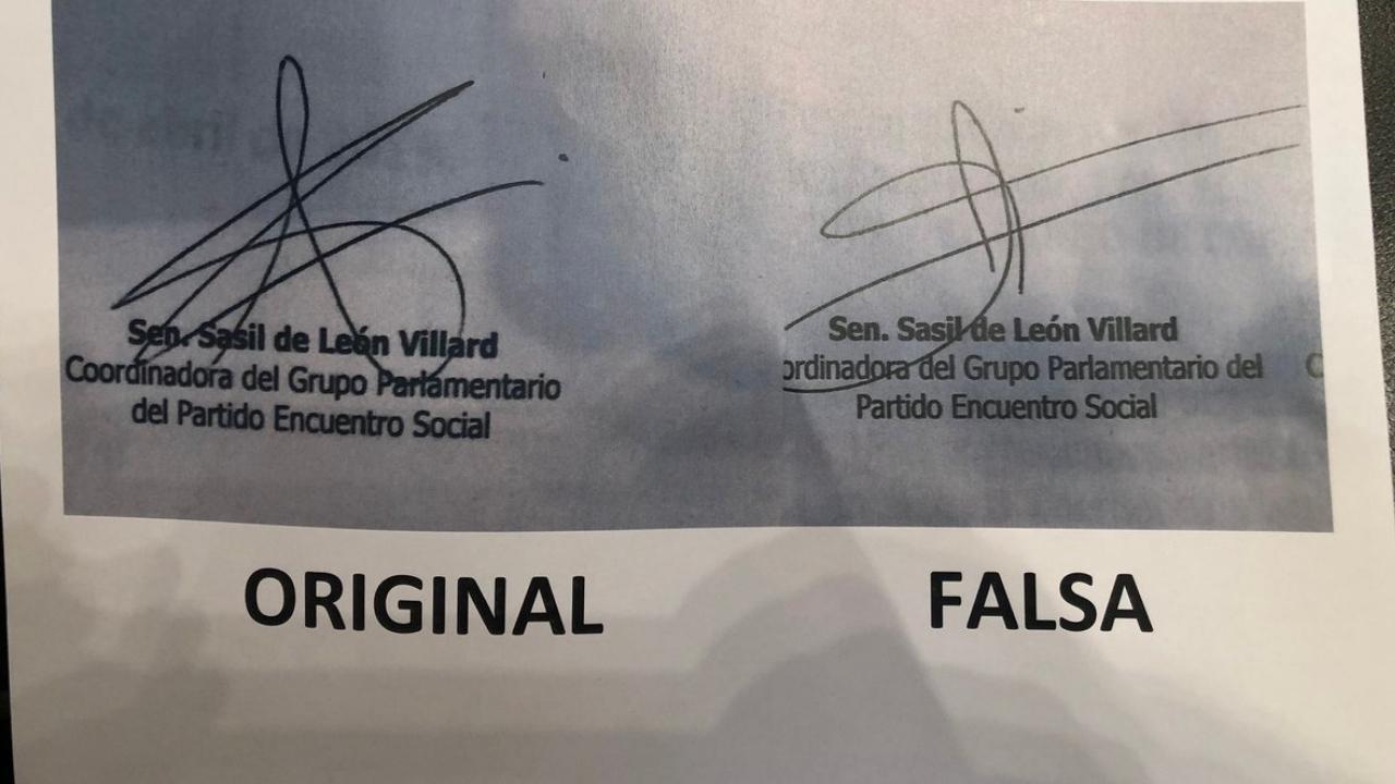 firmas falsas