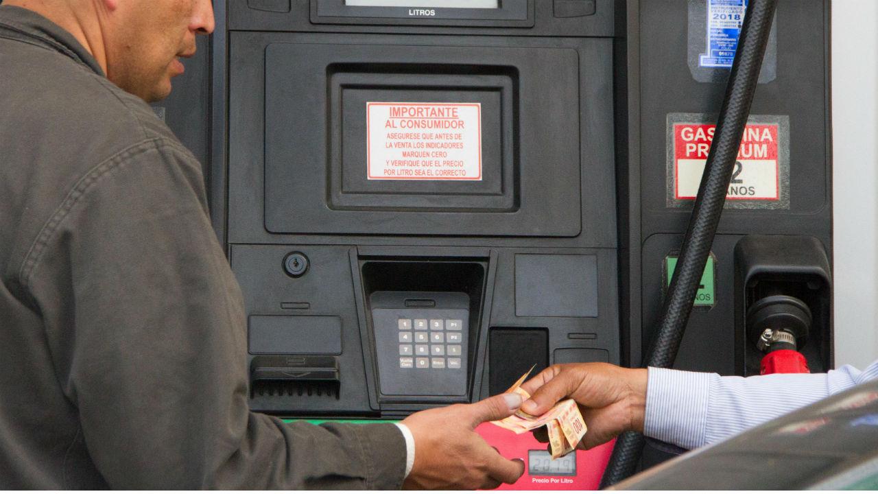 cofece ganancias gasolinas
