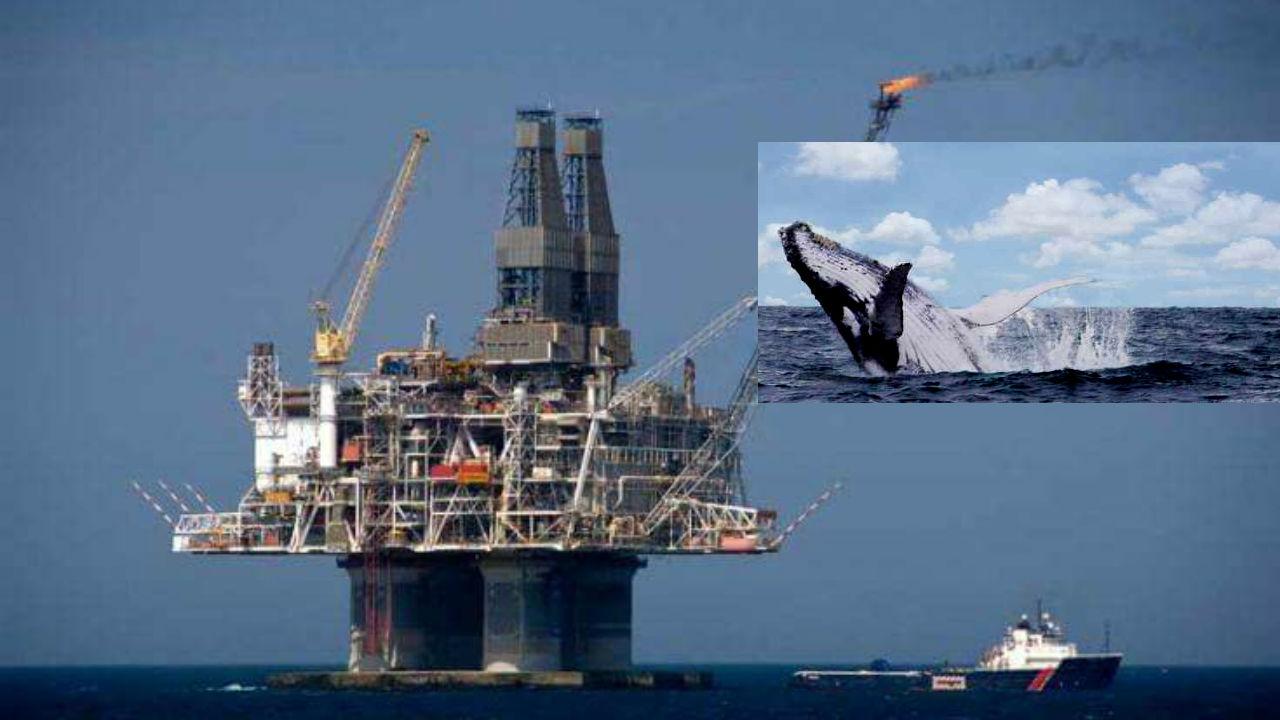 petróleo derramó exxonmobil