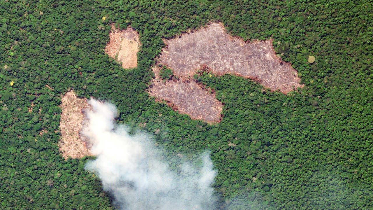 amazonía incendios