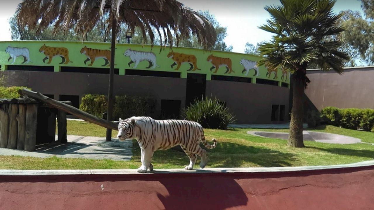 Zoológico Aragón