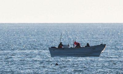 Protección vaquita marina