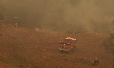 sydney incendios