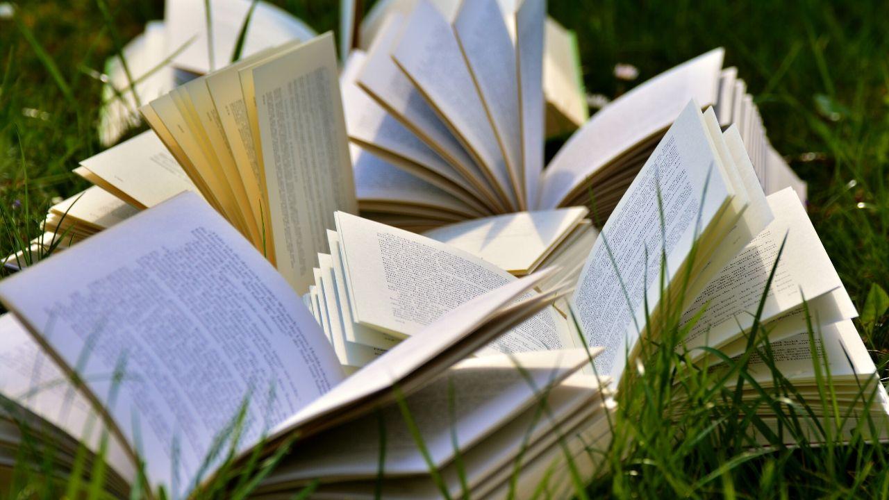 Tendido Libros
