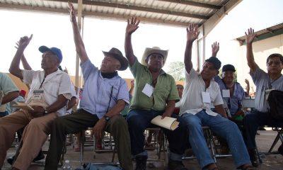 comunidades Tren Maya