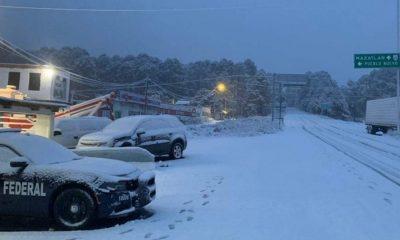nieve Durango