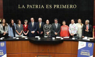 Senado UNAM