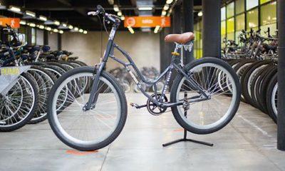 bicipuma robadas