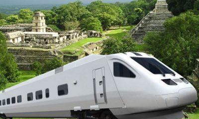 suspensión Tren Maya
