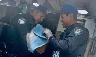 Policías Cuajimalpa