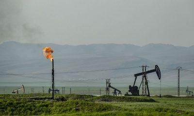 petróleo trump