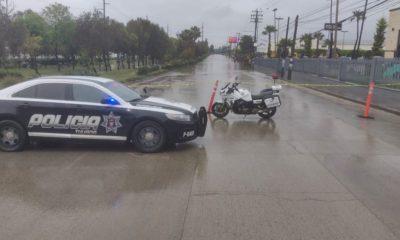policía Tijuana