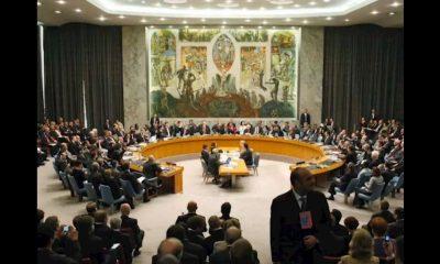 Consejo Seguridad Senado