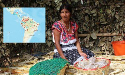 Pueblos indígenas México