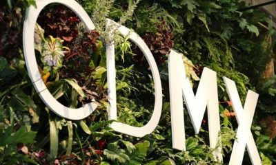 CDMX Semáforo Verde