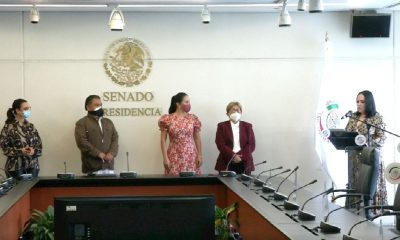 Nancy Guadalupe Sánchez Senado
