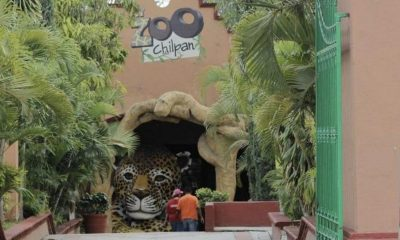 Zoológico Chilpancingo