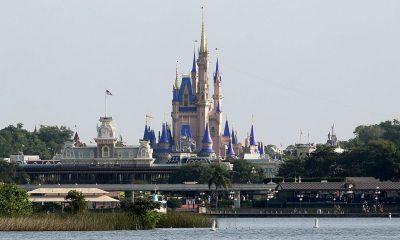 Disney World horarios