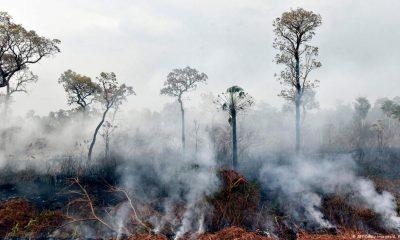 bolivia desastre nacional incendios